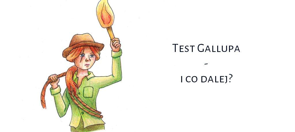 test Gallupa
